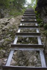 Метални стълби 13060-1155