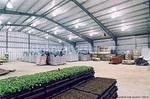 селскостопански халета по поръчка