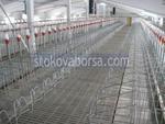 изграждане на метално хале за свинеферма