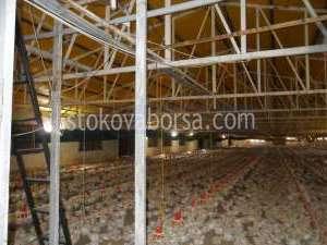 изграждане на метални конструкции за птицеферми