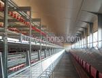 изграждане на птицеферма